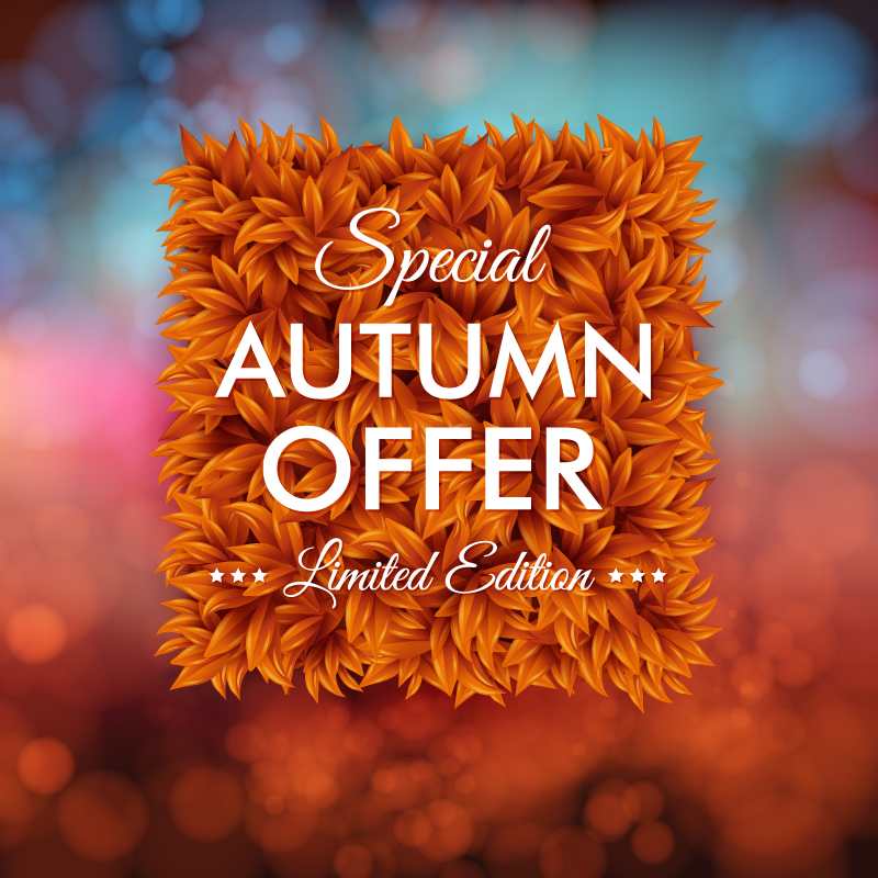 Special Autumn Offer Vector