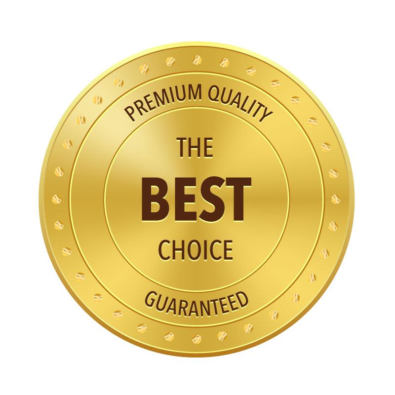 Gold Metal Badge Best Choice Vector
