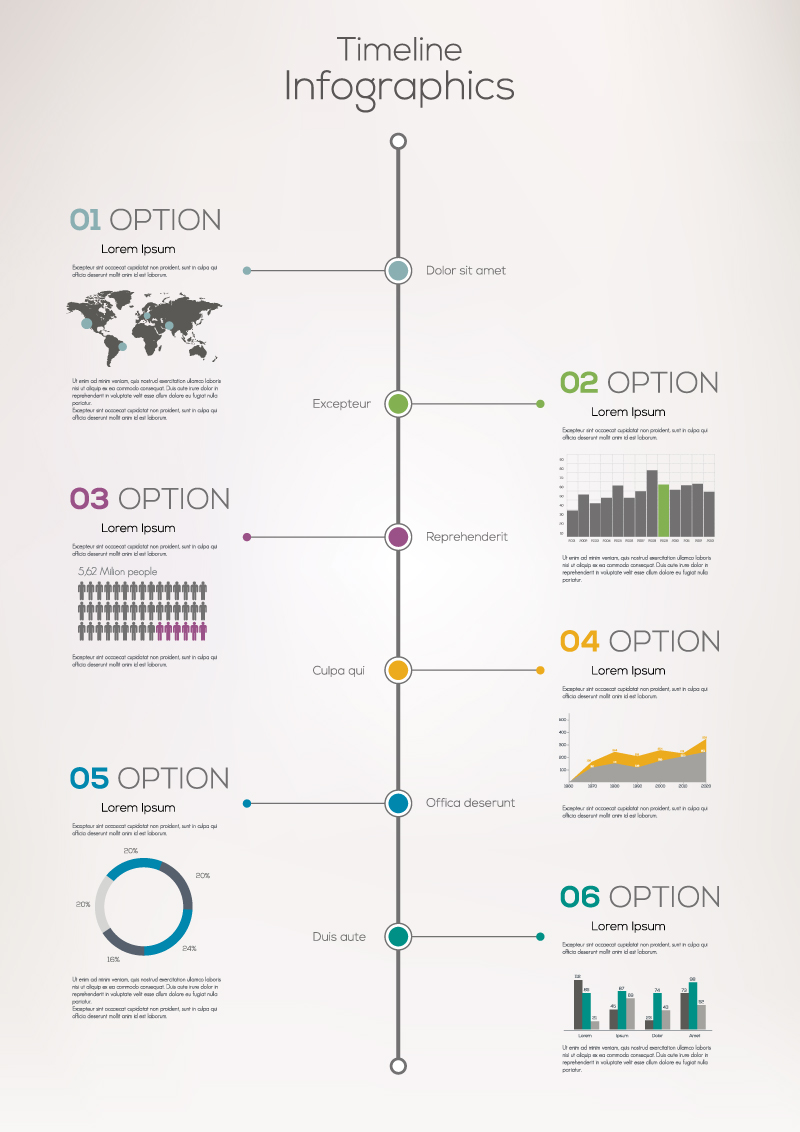 Timeline Option Infographics Vector