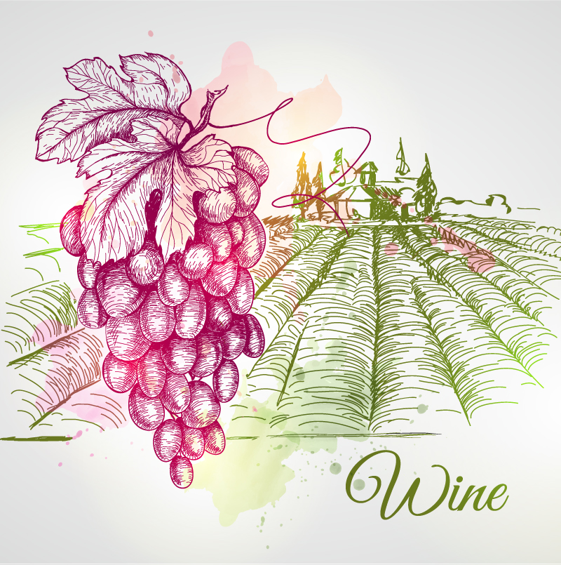 Wine Country Vector