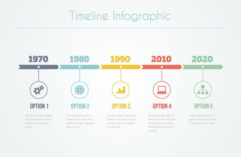 Timeline Infographic Option Vector