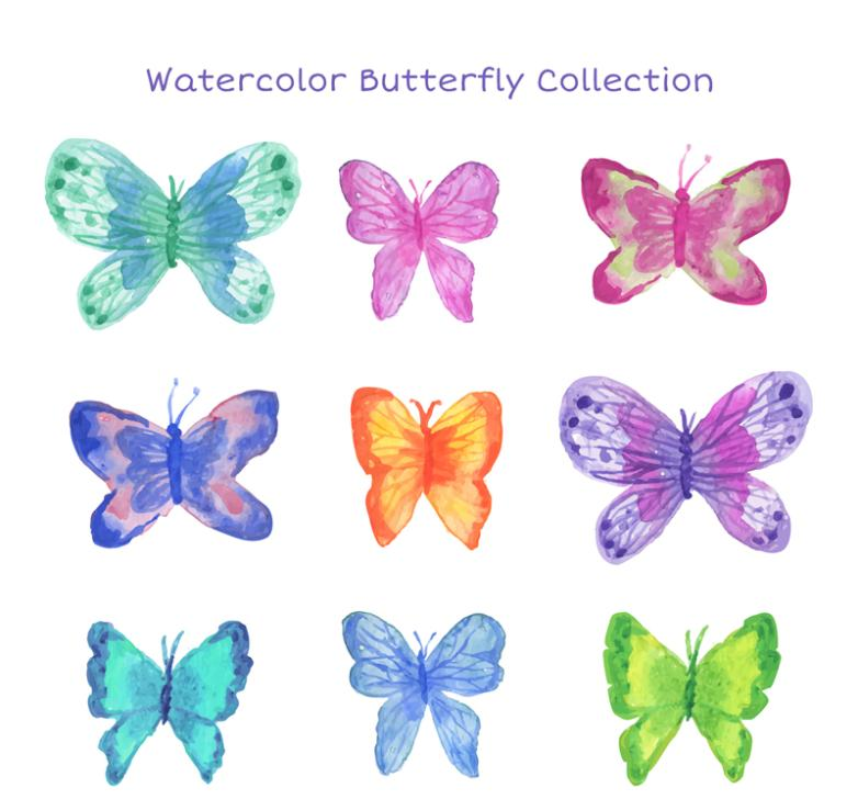 9 Water Coloured Drawing Or Pattern The Butterfly Design Vector