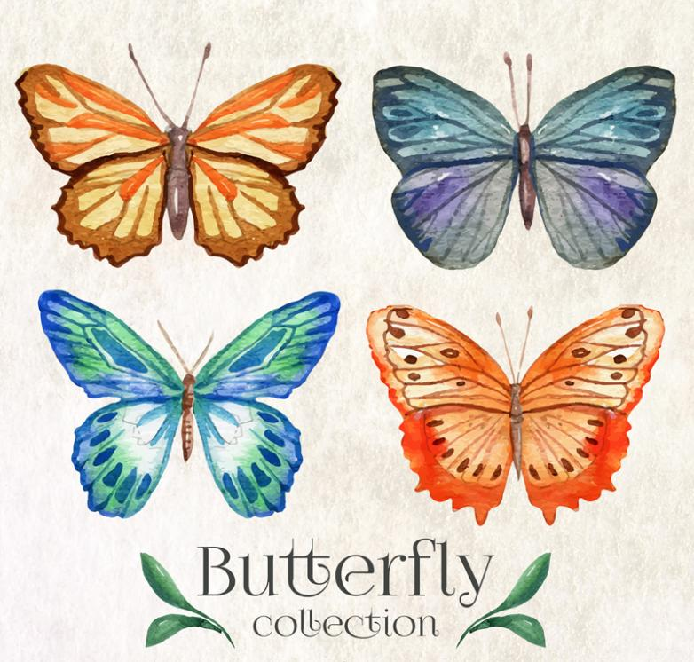 4 Beautiful Watercolor Butterfly Vector