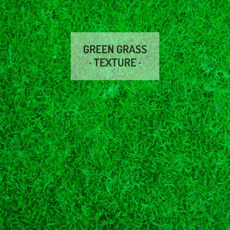 Vivid Green Grass Background Vector