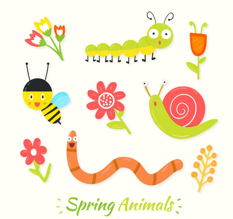 9 Insects And Flowers In Spring Vector