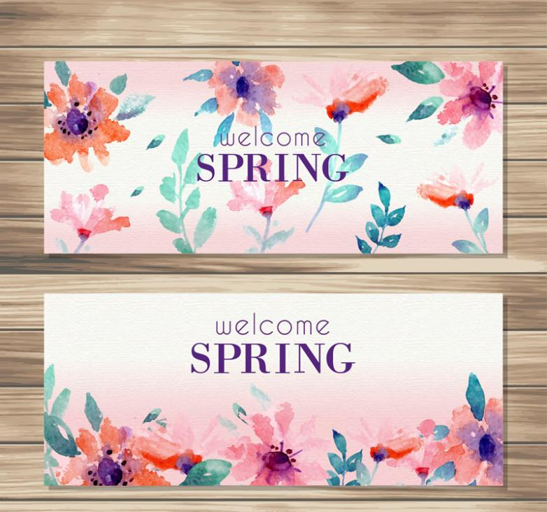 Two Water Spring Flowers Banner Coloured Drawing Or Pattern Vector
