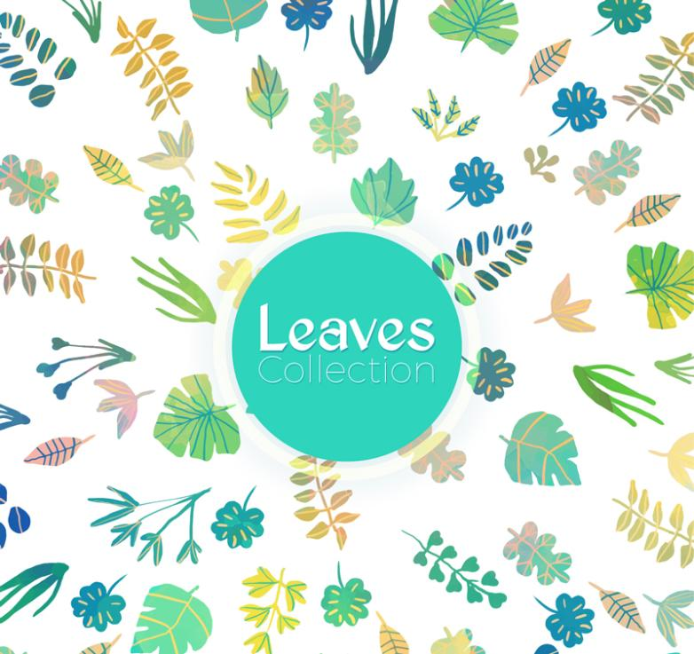 A Variety Of Creative Leaves Collection Vector
