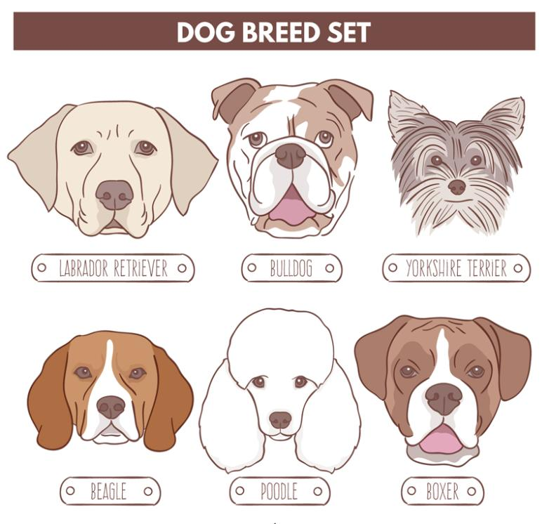 6 Kinds Of Creative Pet Dog Vector