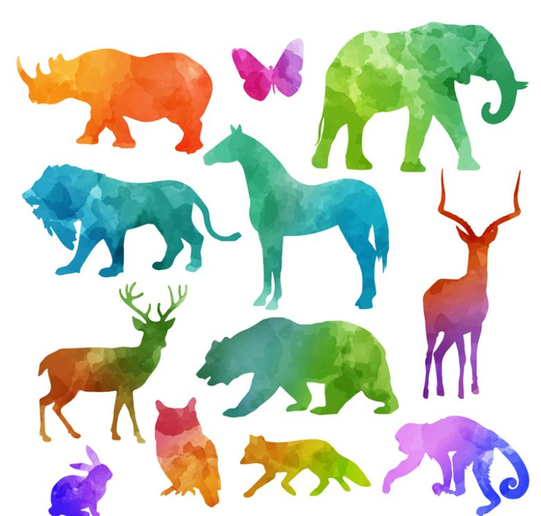 12 The Water Color Wildlife Silhouette Vector