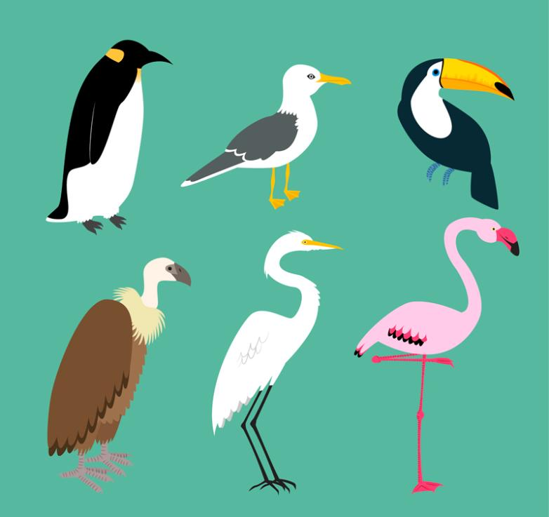 6 Kinds Of Creative Design Of Birds Vector