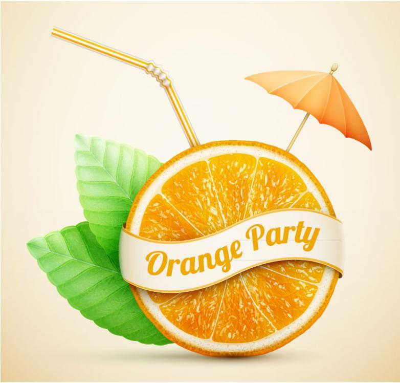 Straw Orange Slice Vector