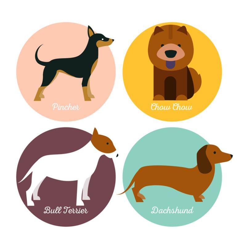 4 Novelty Pet Dog Tags Vector