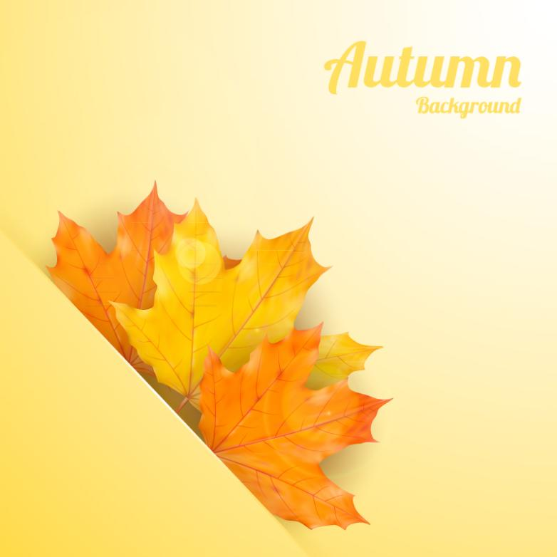 The Autumn Leaves Background Mosaic Vector
