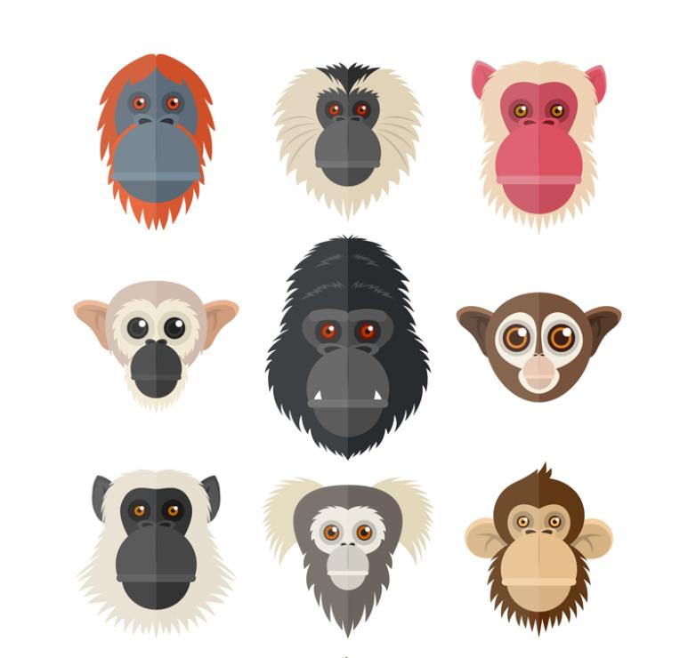 Nine New Creative Monkeys And Apes Vector