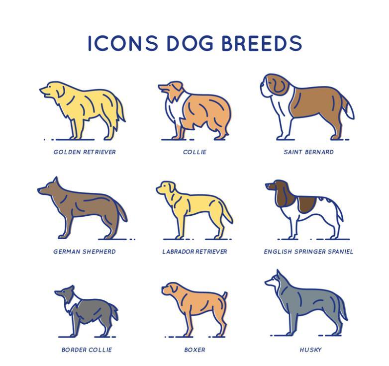 Nine New Creative Pet Dog Icon Vector