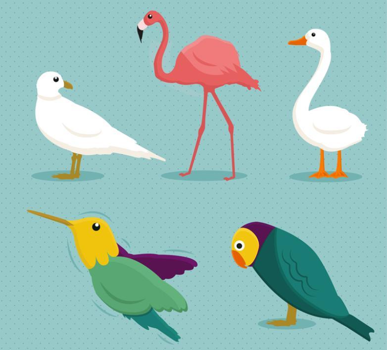 5 Cartoon Birds Vector