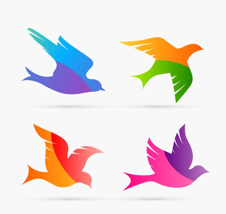 4 Color Matching The Pigeon Designs Vector