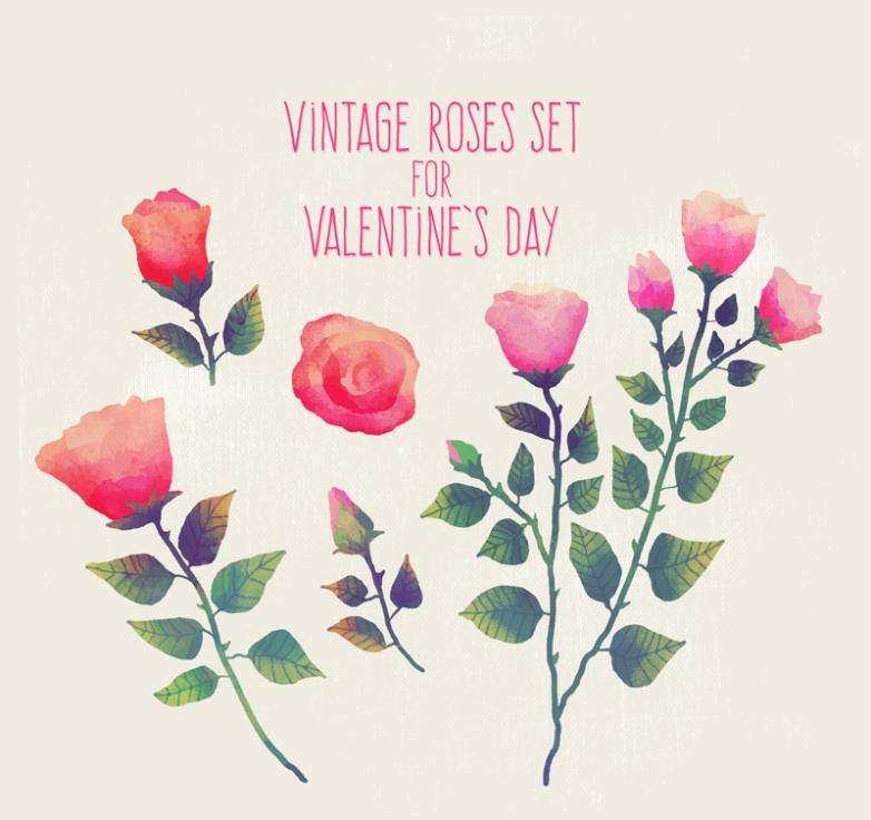 5 Watercolor Roses On Valentine's Day Vector