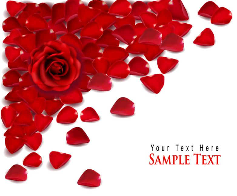 Red Rose Petals Greeting Card Vector