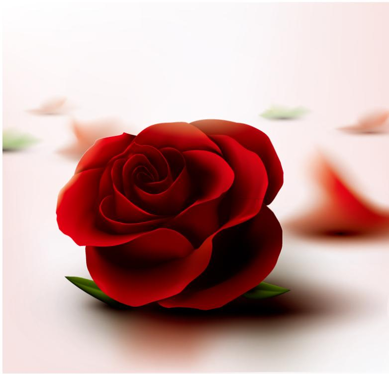 A Single Flower Texture Red Roses Vector