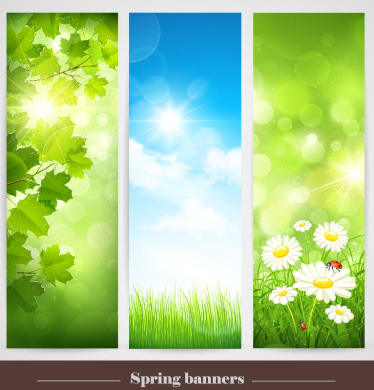 Three Spring Scenery Banner Vector