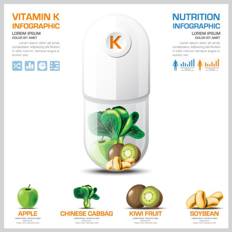 Clotting Vitamin Medical Information Vector