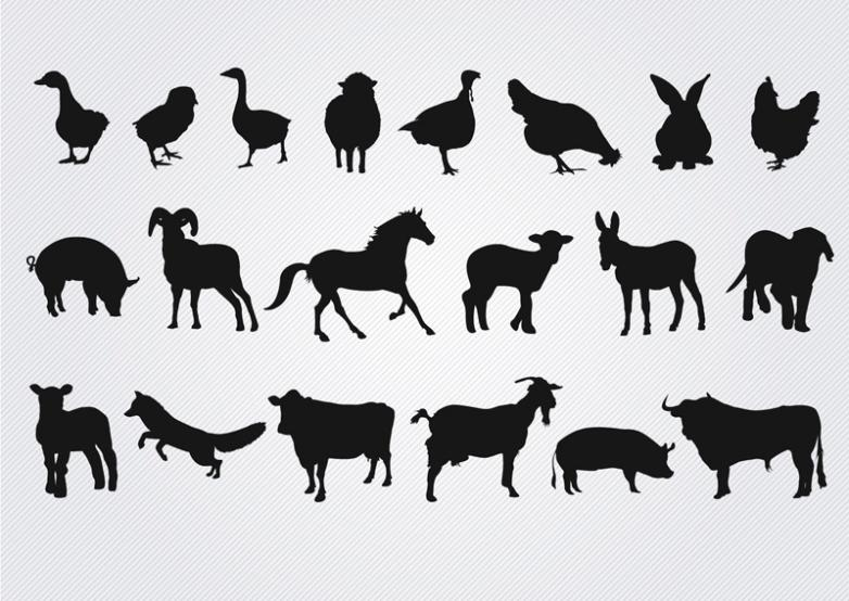 20 Farm Animals Vector