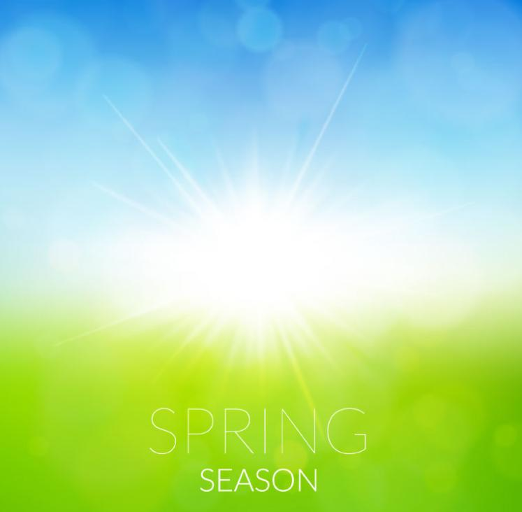 In The Spring Sunshine Grass Background Vector
