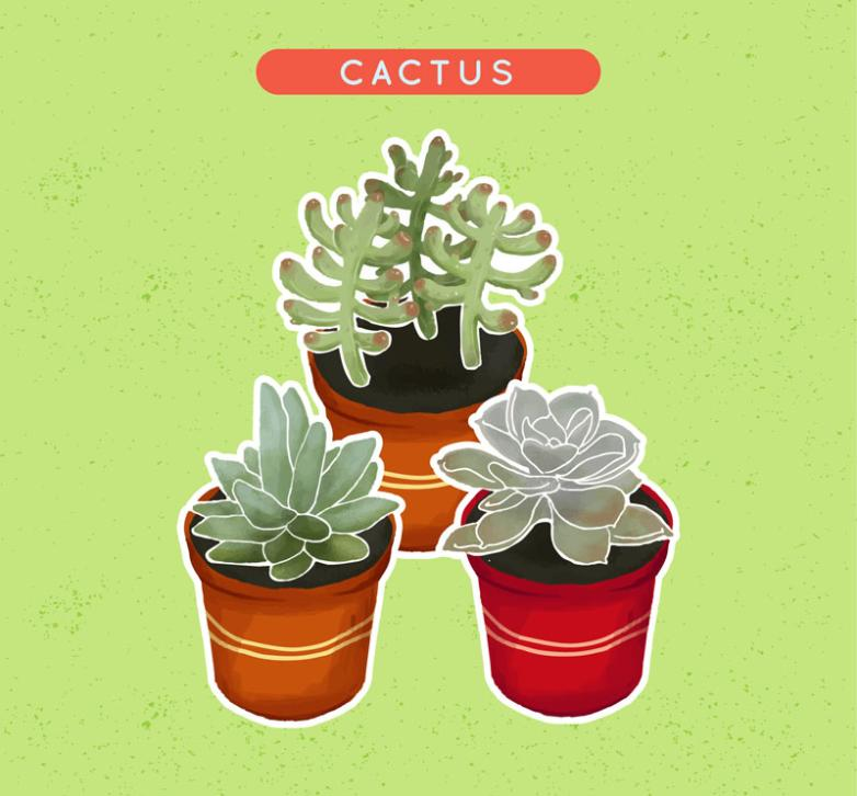 3 Meaty Plant Basin Of Water Coloured Drawing Or Pattern Vector