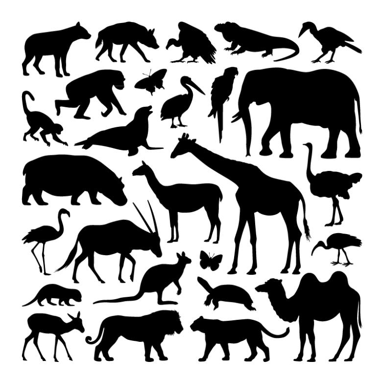27 Wildlife Silhouette Vector