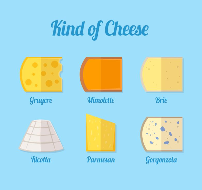 6 Kinds Of Flat Design Cheese Vector