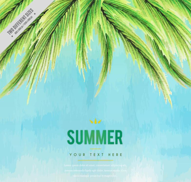 Coloured Drawing Or Pattern Coconut Leaves In Summer Vector