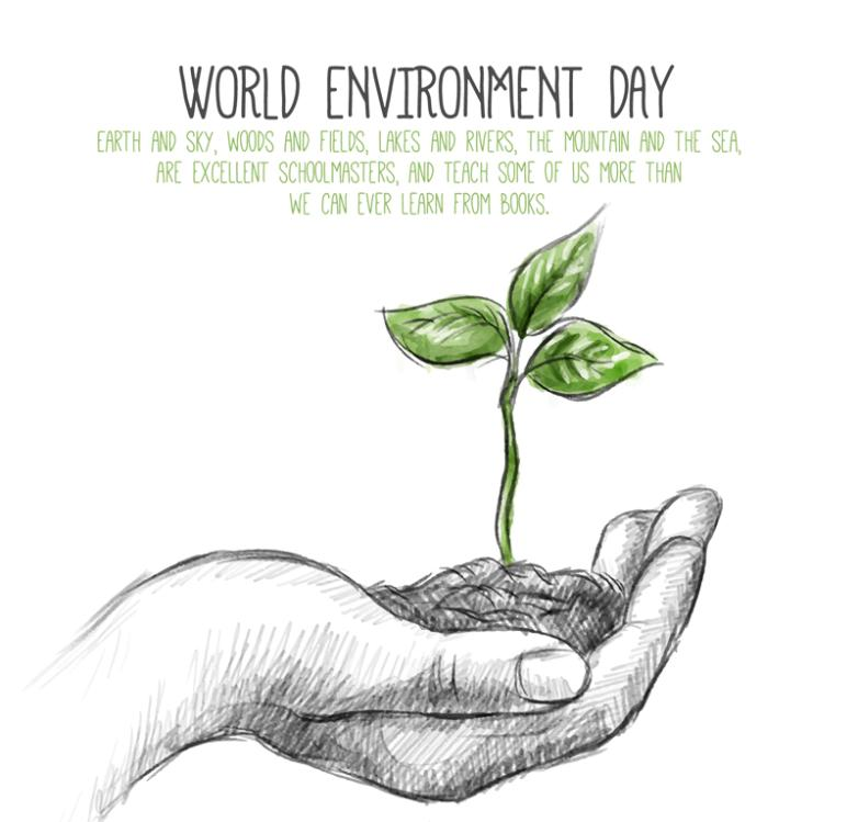 World Environment Day Cards To Hand The Saplings Vector