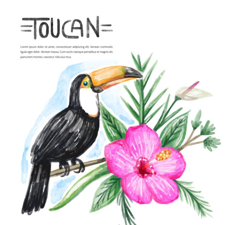 Water Painting Toucan And Flowers Vector