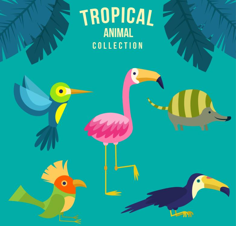 5 Kinds Of Cartoon Tropical Animals Vector