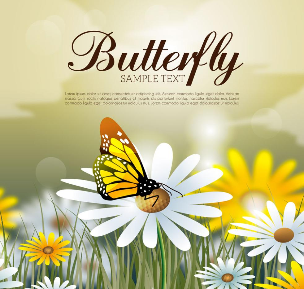 Beautiful Honey Daisy Flowers Butterflies Vector