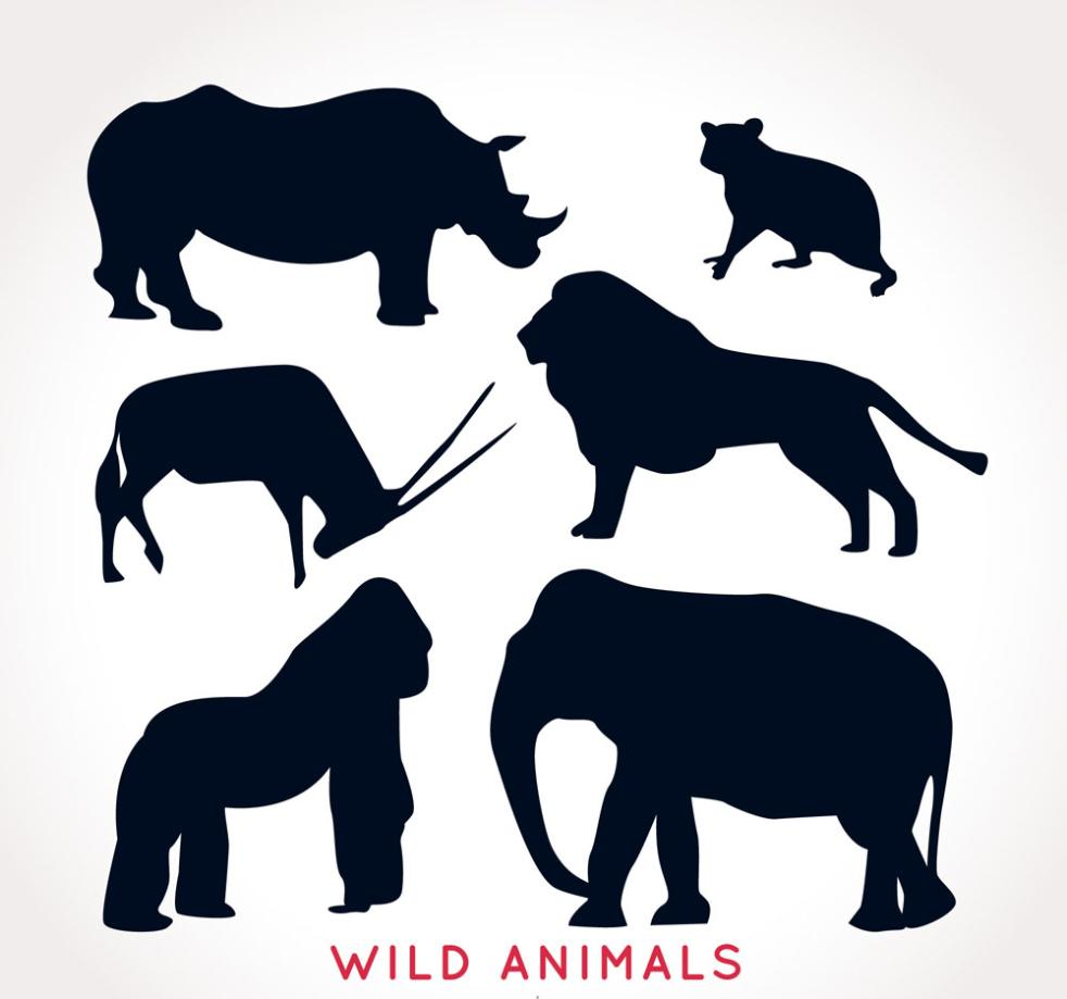 Six Creative Animal Silhouette Vector