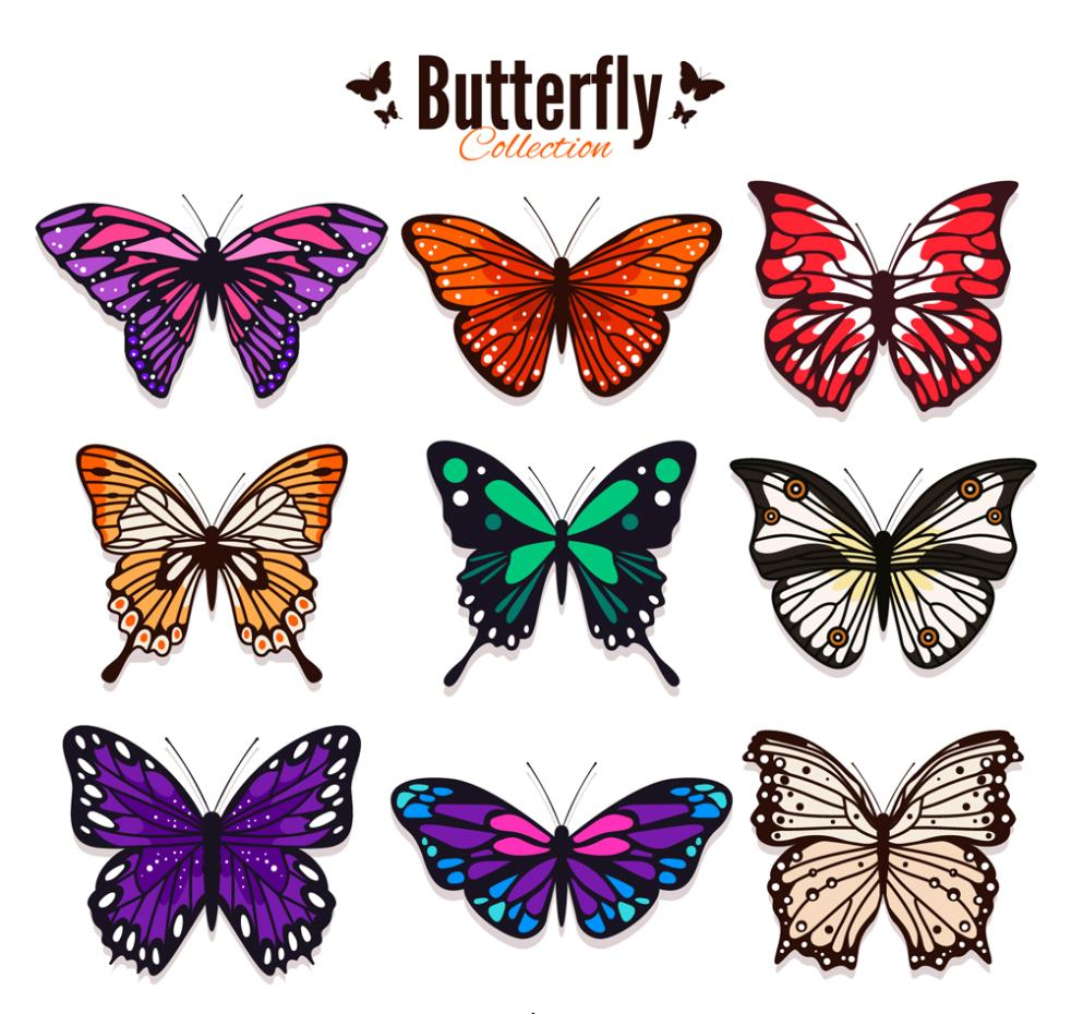 9 Color Butterfly Designs Vector