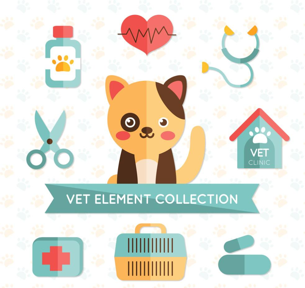 9 Elements With Delicate Pet Hospital Vector