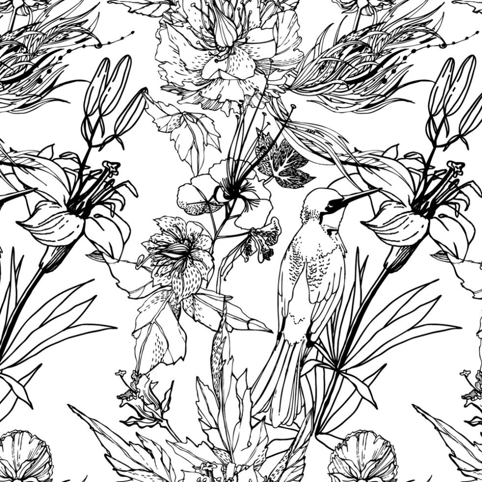 Black And White Hand Draw Flowers And Birds Design Vector