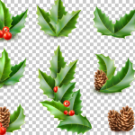 Cherries and Pines for Christmas 2019 Vector