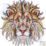Lion illustration 2019 Vector