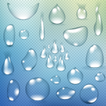 Lifelike transparent droplets 2019 Vector