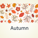 Cartoon autumn flowers and plants 2019 Vector