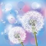 Aesthetic dandelion 2019 Vector