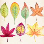 Watercolor autumn leaves 2019 Vector